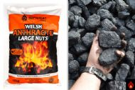 Welsh Anthracite Large Nuts - 1/2 tonne (black diamond)
